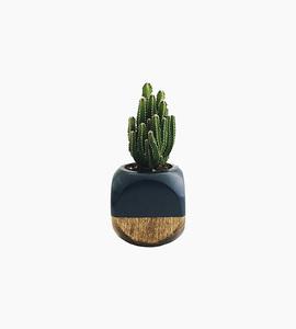 Sea   asters mini geometric planter   black